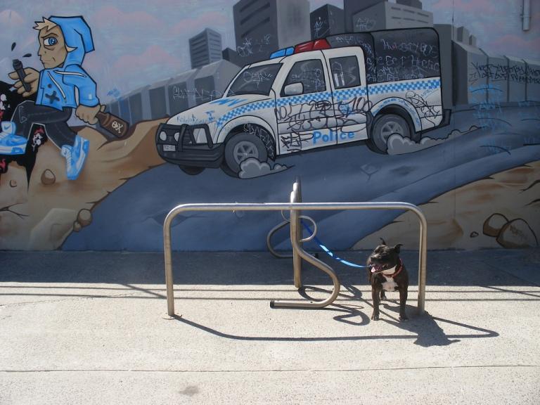 2007 - Da Police - Teazer