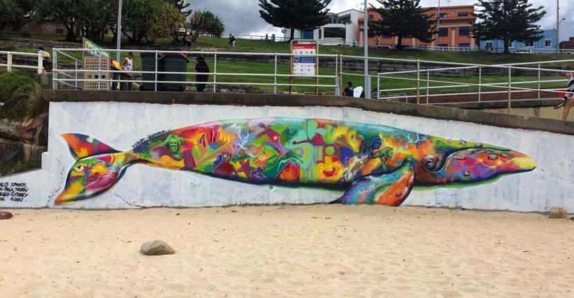2016 – Southern RightWhale