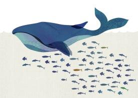 2017 - Lineforawalk - Whale