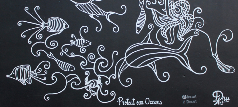 2017 – Protect OurOceans
