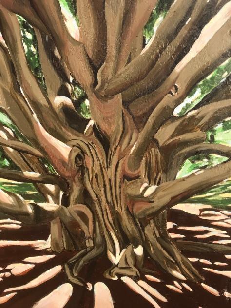 2017 - Margherita Sanguineti - Moreton Bay Fig Tree - Detail
