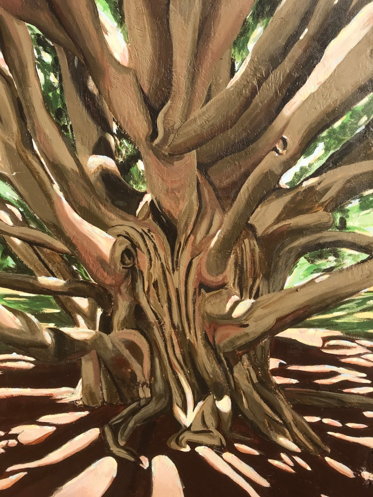 2017 - Margherita Sanguineti - Moreton Bay Fig Tree - Detail