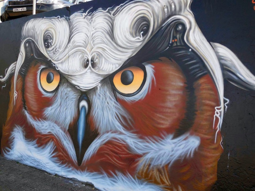 2014 – Owl