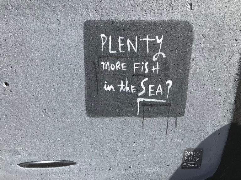 2019 - Plenty More Fish in the Sea - Hayley Walsh - Detail 2